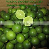 SPECIAL _ *FRESH SEEDLESS LIME* _ HIGHT QUALITY _ GOOD PRICE
