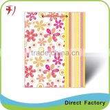 Paper Shopping Bag wholesale