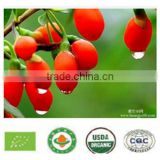 2015 New China biggest trading ningxia organic goji berries 100% Natural 2x 5kg certificate goji berry for sale