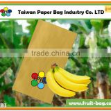 TPBI Taiwan factory banana fruit growing kraft paper bag
