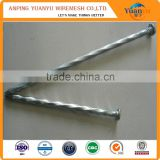 flat round head common nails concrete steel nails