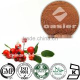High quality vitamin c tablet or 15% polyphenols dried rose hip extract