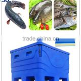 SCC brand high fish cold storage,fish storage freezer,ice bag storage freezer