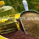 Canada canola oil for any type of cooking