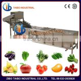 Fruit processing machinery washer type strawberries washing machine