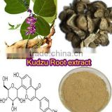 Chinese Herbal medicine best sellling wholesale organic Kudzu Root Extract