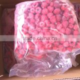 IQF frozen raspberry grade A whole