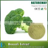 High quality Spray Dried Freeze-Dried Broccoli Sprout Powder Organic broccoli extract Bulk Pure Broccoli powder