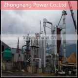 Biomass gasification power plant in overseas
