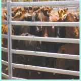 Livestock Farm Fence / Horse Fence Panel / Cattle Fence Panel for Animals
