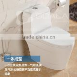 GO-17 Bathroom one piece dual flush toilet