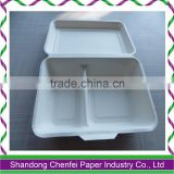 100% compostable Sugarcane pulp food container