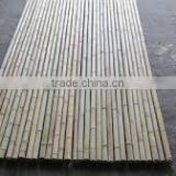 Straight and cheap Bamboo Bamboo pole origin Vietnam