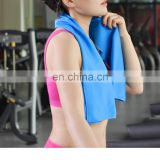 Wholesale Polyester cooling towel Pva magic Towels