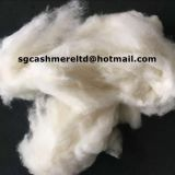 Chinese washed sheep carded wool dehaired yak cashmere fibre