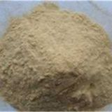 Sophora Root Extract,Sophora Root Extract Factory,Sophora Root Extract Supplier