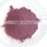 Freeze Dried Blueberry Powder 40-60mesh