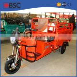 three wheel electric motor bike for sale