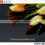 titanium black color mirror finish stainless steel sheet                                                                                                         Supplier's Choice