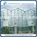 High Quality Glass Greenhouse for vegetable                                                                         Quality Choice