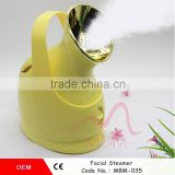 Zhengzhou Gree Well New Arrival Facial Face Steamer Deep Cleanser Mist Steam Sprayer Spa Skin Vaporizer Hot Selling