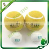 dog toys tennis ball
