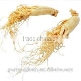 Ginseng Root Extract, Panax Ginseng Root Extract, brown yellow powder Panax Ginseng Extract