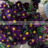 Professional company direct sell Artificial Flowers For Party Supplier multihead carnation suitable wedding company