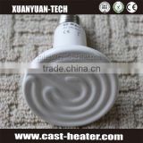 CE Approval Far Infrared Heating Light