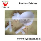 poultry drinker for pigeons
