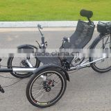 Inquiry about 250w Foldable Suspension Electric Recumbent Trike