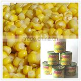Tinned Sweetcorn buy canned sweet corn Sweetcorn 340G                                                                         Quality Choice