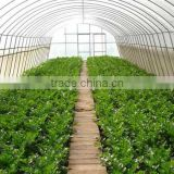Greenvinci kiln drying wood equipment / wood drying equipment for sale/drying greenhouses