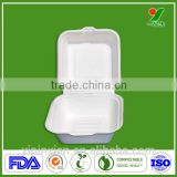 Disposable takeaway sugarcane fibers fast food packaging paper tray                                                                         Quality Choice