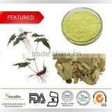 100% Natural Pure Epimedium Extract, Epimedium Extract powder