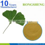 High Quality Gingoflavones Ginkgo Biloba P.E.                                                                         Quality Choice