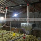 Goldenest Supply Commercial used poultry house equipment for poultry farming pan feeders JCJ01-OP03