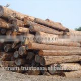 Solid wood timber Keruing wood timber Keruing flooring timber