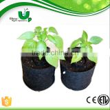 felt nonwoven growing bag/Black Fabric Grow Pots/Planter Bags