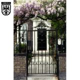 Cheap Iron fences and gates front yards