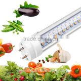 HOT sale t8 pinky led plant grow light tube hydroponic tube factory direct price integrated t8 led light tube for vegs