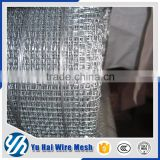 square galvanized wire mesh / square wire mesh(huge factory/good qality/low price) fence
