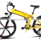 Good Quality Hot Sale Two Wheel Tandem E-Bikes With Basket