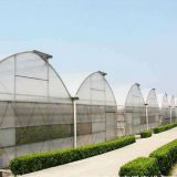 INquiry about Agricultural multi-span hot galvanized steel greenhouse frame for tomato