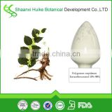 giant knotweed extract resveratrol/giant knotweed rhizome extract resveratrol/marcas de resveratrol