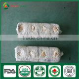 Health Food China Wholesale Shiitake Mushroom Log Spawn Growing Kit Factory Price for Mushroom Farm