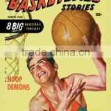 All Basketball Stories: Hoop Demons 20x30 poster