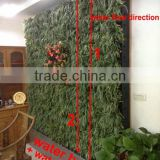vertical garden modules hydroponics living plant wall home and outdoor