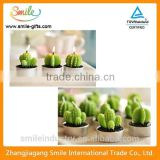 Creative Candle Cute Cactus Potted Plants Birthday Candles                                                                         Quality Choice