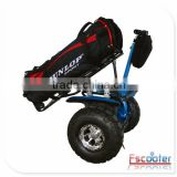 OEM Escooter huge business opportunity green-energy rechargeable battery powered electric golf cart scooter
